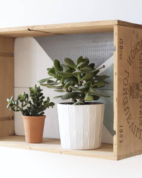 Acheter Caisse en bois tete de lit : caisse a pomme en bois occasion avis 1